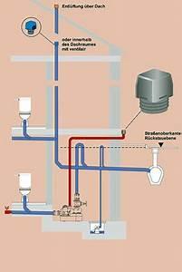 Wasserleitung Durchmesser Einfamilienhaus : l ftung von abwasserleitungen bad und sanit r abwasser baunetz wissen ~ Frokenaadalensverden.com Haus und Dekorationen