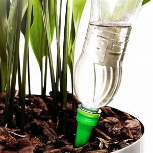 Pflanzen Im Urlaub Bewässern : bew ssern im urlaub gartenzauber ~ Markanthonyermac.com Haus und Dekorationen