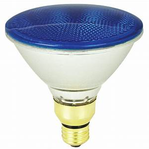 Outdoor flood light bulbs lowes : Mood lites watt par medium base e blue
