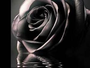 Rosen Tattoos Schwarz : b hse onkelz erinnerung music mix songs and more pinterest rosen rosen tattoo schwarz und ~ Frokenaadalensverden.com Haus und Dekorationen