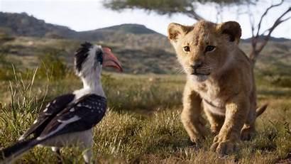 Lion King Trailer Simba Donald Glover Seth