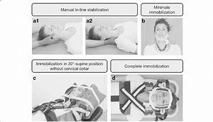 The Different Types Of Immobilization Using The E M S