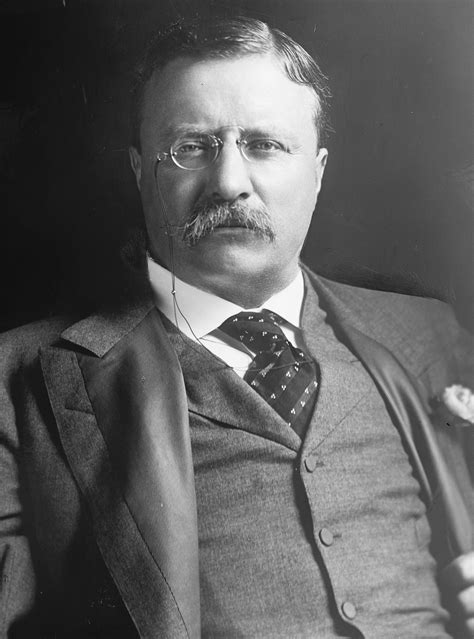 Teddy Roosevelt Images File Theodore Roosevelt Harris And Ewing Jpg