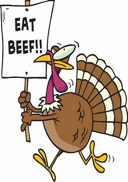Thanksgiving Funny Clipart November Clip Beef Cliparts