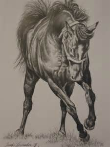 Detailed Horse Pencil Drawing