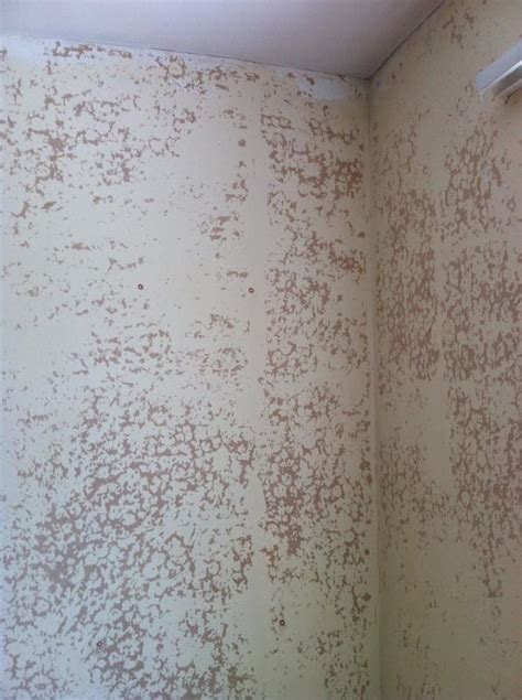 painting  flaking wallpaper primer diynot forums