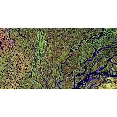 The Lena River Delta imaged in infrared light by Landsat