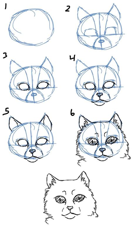 howtodraw   draw cat facesheads front view