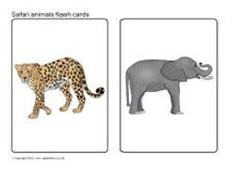 wild animal flash cards sb sparklebox language