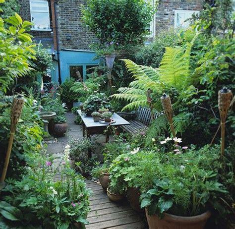 shady  fresh gardens  urban jungle ideas house