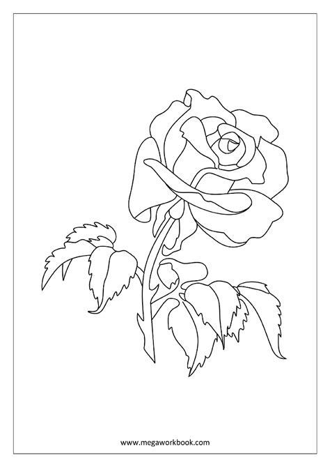 Coloring Sheet - Rose | Leaf coloring page, Tree coloring