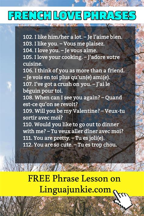 127 French Phrases. Common Greetings & Love Phrases for ...