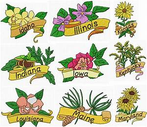 Julias Needle Designs Usa State Flowers