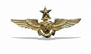 Navy Astronaut Pilot Wings (page 2) - Pics about space