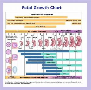 25 Best Reproductive Technoscience Images On Pinterest