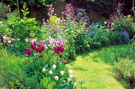 how to plant bulbs for colour in your garden