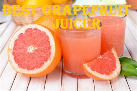 grapefruit juicer invest consider any before juice