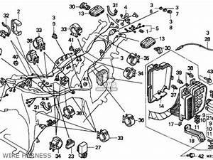 honda goldwing engine diagram get free image about With goldwing 1200 gl engine diagram get free image about wiring diagram