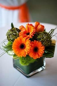 Vase Für Eine Blume : 1001 ideen f r deko mit moos zum erstaunen und bewundern ~ Sanjose-hotels-ca.com Haus und Dekorationen