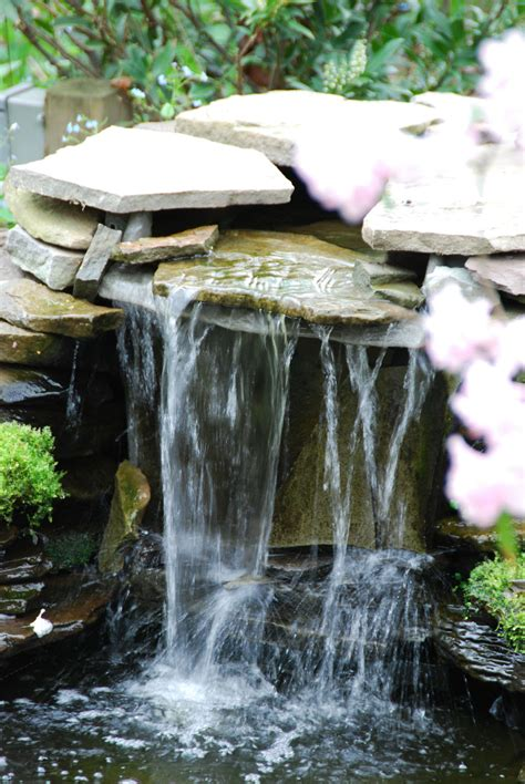 backyard waterfall pond line ponds water garden waterfall designs