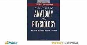 Best Of Anatomy And Physiology Coloring Workbook Answers
