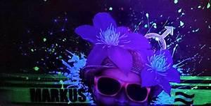 Farbe Die Im Dunkeln Leuchtet Ohne Schwarzlicht : ihr maler f r wand und im rahmen butterfly art melanie nicklisch ~ Orissabook.com Haus und Dekorationen