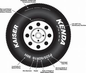 Automotive Tires  Passenger Car Tires  Light Truck Tires