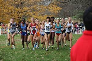 Top College Runners Gather For NCAA Cross Country ...
