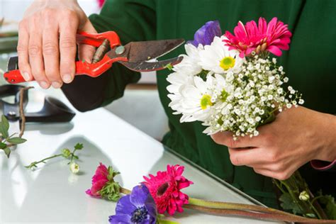 simplicity  flower arranging home wizards