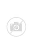 Pin Up Girl Tattoo Design Ideas and Pictures Page 2 - Tattdiz  Traditional Pin Up Tattoos Designs