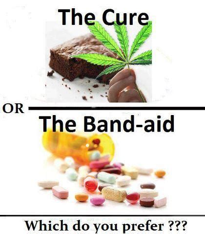 Band Aid Meme - the cure or the band aid