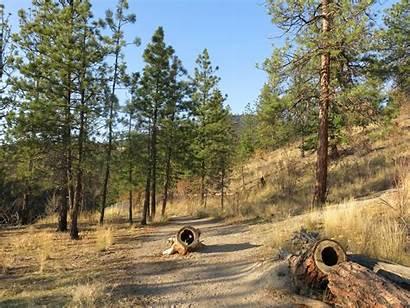 Trail Trails Bear Creek Canyon Rim Hikingaddiction