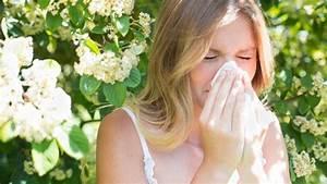Erste Anzeichen Einer Erkältung : haben sie eine pollenallergie erste anzeichen von heuschnupfen ~ Whattoseeinmadrid.com Haus und Dekorationen