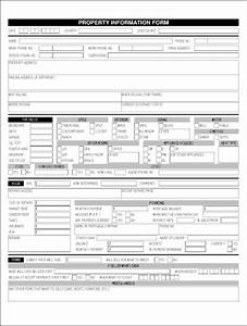 property information sheet james orr real estate services With real estate listing sheet template