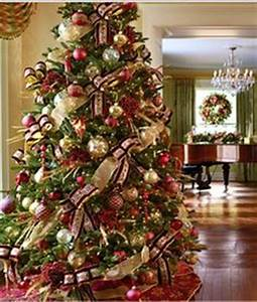 Christmas Trees on Pinterest