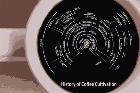 20 Infographics About Coffee Starbucks Iced Coffee Pour Over Ground Output Best Machine Product Review Store Sold In Grocery Stores Too Coarse Grounds Knock Out Bucket Png