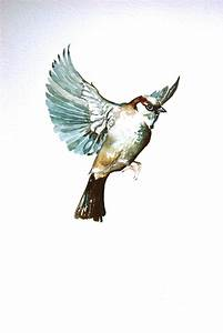 Painting in Trees: Sparrow in Flight