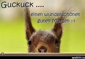 Guten Morgen Tierbilder : 21 best images about guten morgen on pinterest morgen good day and enjoying life ~ Frokenaadalensverden.com Haus und Dekorationen