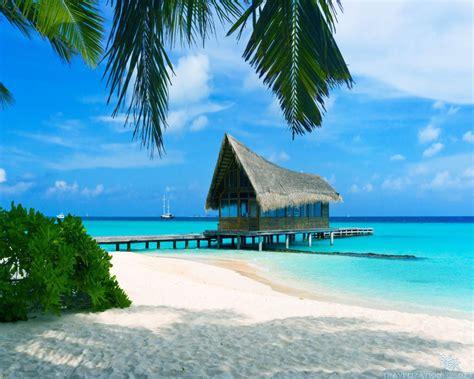 """16 curiosità sulle Bahamas, """"il più bel posto del mondo"""