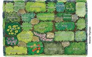 Kräuterbeet Anlegen Bilder : die besten 25 garten anlegen ideen auf pinterest hochbeet anlegen nutzgarten anlegen und ~ Orissabook.com Haus und Dekorationen