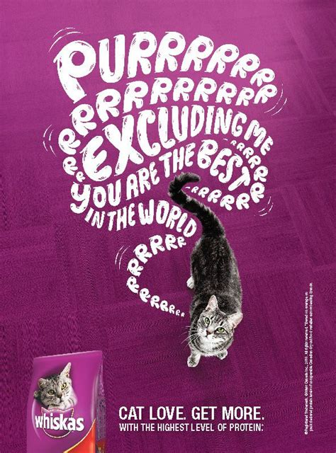 whiskas magazine  behance pet ads social media
