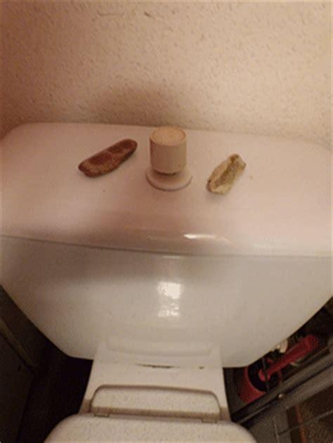 astuces pour 233 conomiser l eau des toilettes pro fen 234 tre votre sp 233 cialiste fen 234 tres