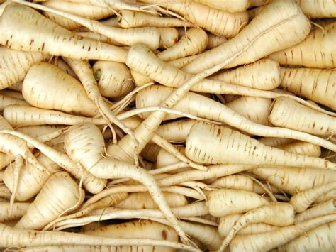 How Do I Store Parsnips?  Parsnip Recipes