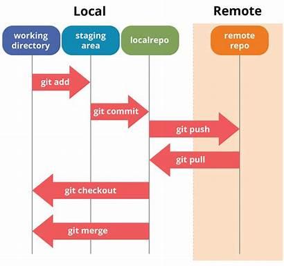 Git Tutorial Operations Edureka Commands Pull Diagram