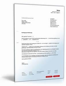 Kündigung Mietvertrag Wegen Eigenbedarf : k ndigung mietvertrag musterbrief vermieter kostenlos ~ Lizthompson.info Haus und Dekorationen