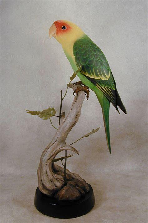 extinct carolina parakeet orig carving ebay