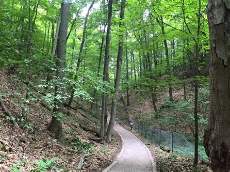 trails  michigan      love  outdoors