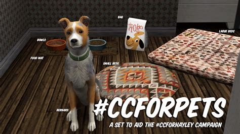 Cc For Pets By Bau