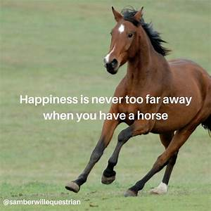 Happiness is ow... Horse Owning Quotes