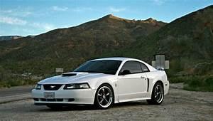 New Edge Mustang | New edge mustang, 2004 ford mustang, Mustang
